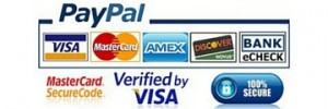 PayPal and Credit card - Secure payment in Canarias Taxi